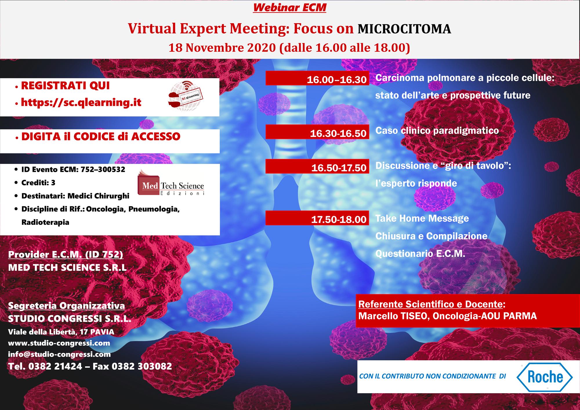 18/11/20-Virtual Expert Meeting